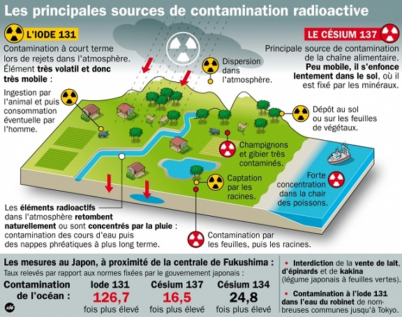 les principales sources de contamination radioactive